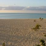 Area7_Beach_Shot