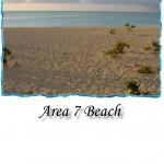 Area_7_Beach