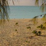 Beach_Cove_3