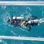 Blue_Water_Diving2