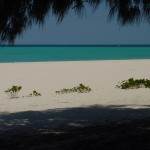 Cool_Beach