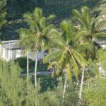 FWS_House