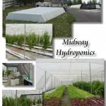 Hydroponics_Composite