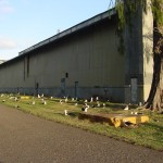 NW_Side_SAR_Hangar