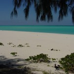North_Beach5