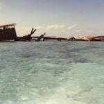 ReefHotel_img272