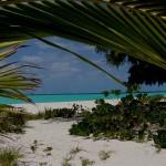 The Beach_4a1