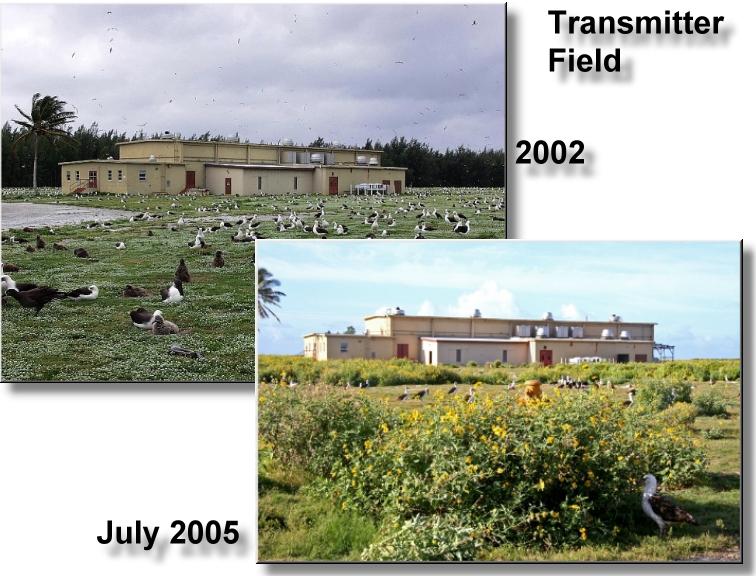 Transmitter_Field2